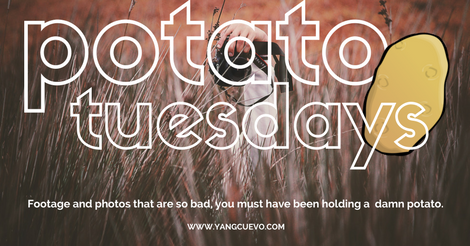 Potato Tuesdays